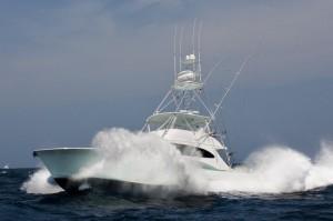 Fishing Charters-Fishing Guides