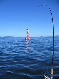 Oregon Coast Buoy 10 Fishing Information