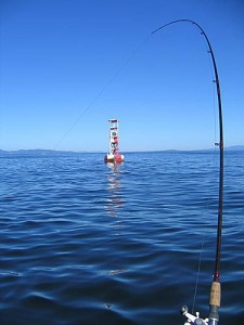 Oregon-Coast-Buoy-10-Fishing-Guide