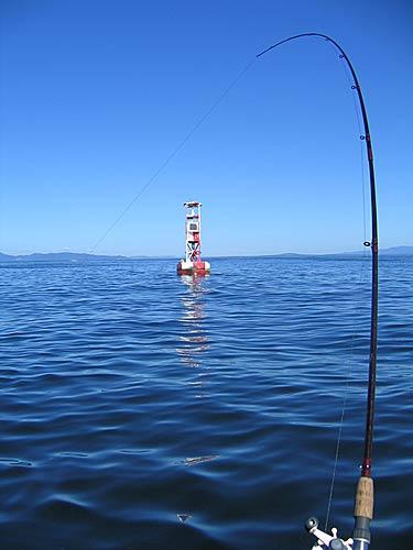 Oregon Coast Buoy 10 Fishing