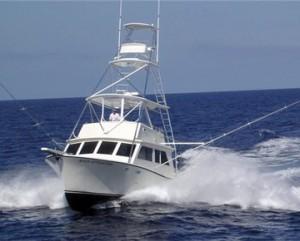 Reel Adventure Fishing Information