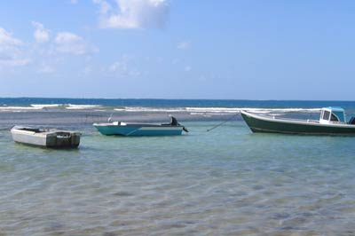 Antigua Fishing Charters