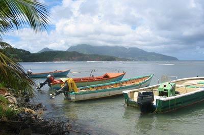 Dominica Fishing Charters