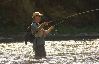 Idaho Fishing Guide
