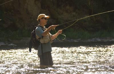 Idaho Fishing Guide