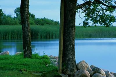 Lake Winnipegosis Manitoba Fishing