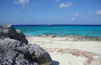 Turks and Caicos Charter Fishing