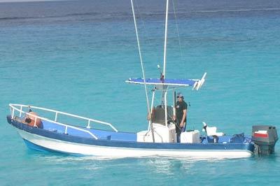 Bucerias Fishing Charters