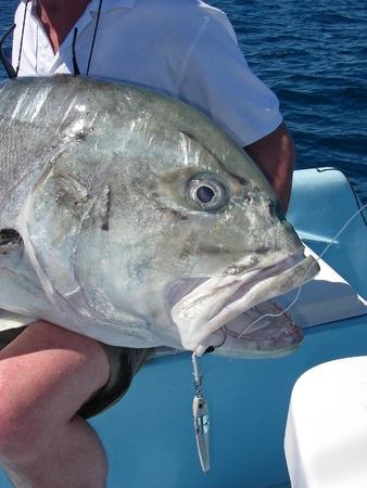 deep sea fishing africa giant trevally