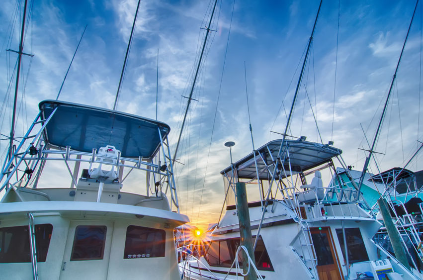 worldwide fishing charters and fishing guides
