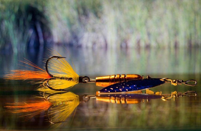 spinnerbait fishing tips