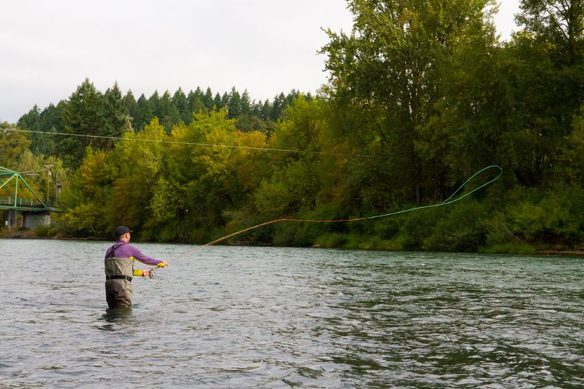 fly fisherman casting fly into river for steelhead