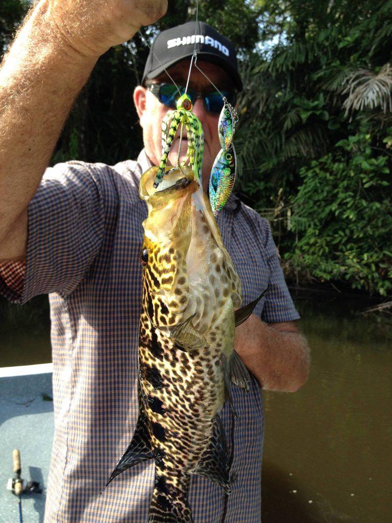 jungle tiger bass