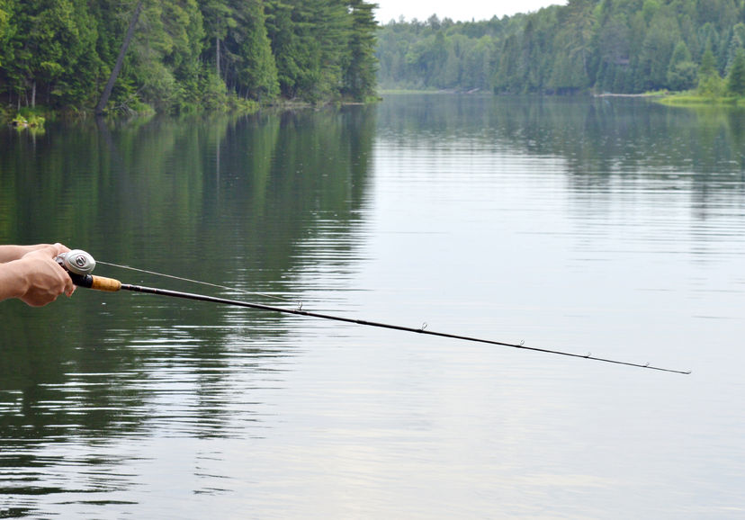 best baitcasting rod under 100