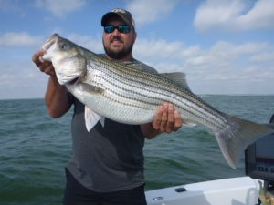 lake texoma striped bass fishing