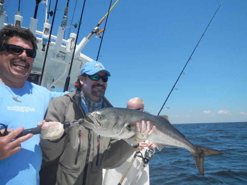 northeast bluefish fishing charters