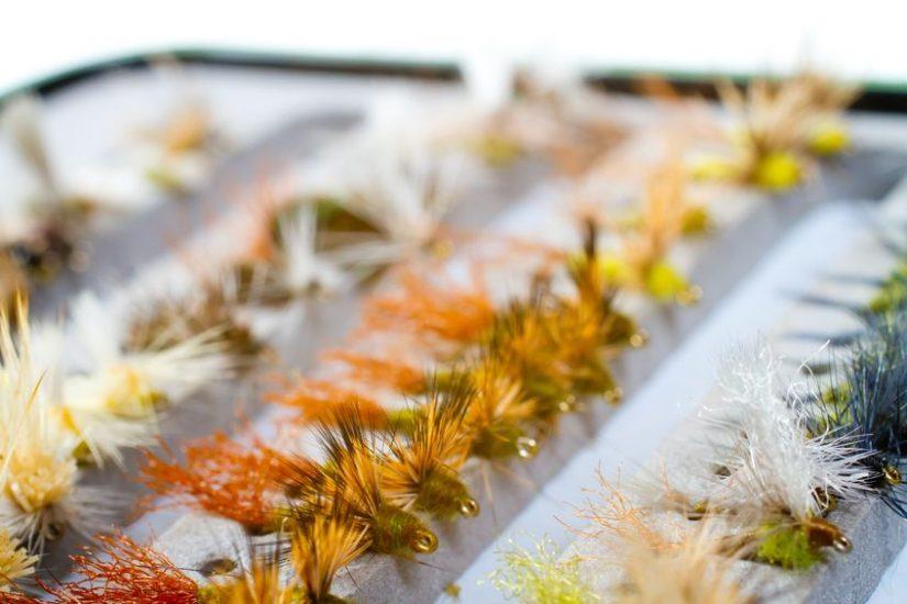 fly fishing box of flies including caddis, bwo, adams, stone
