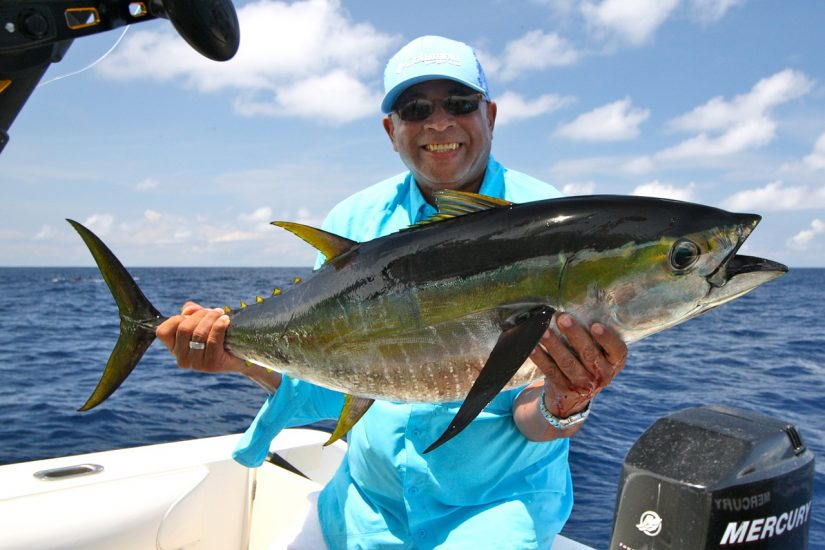 fishing yellowfin tuna in costa rica