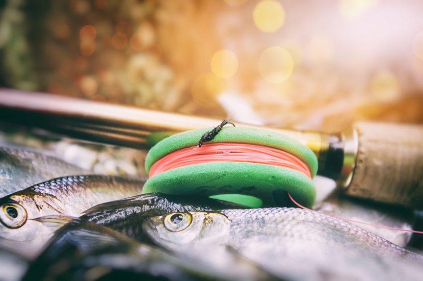 tenkara fly fishing - minimalist fly fishing