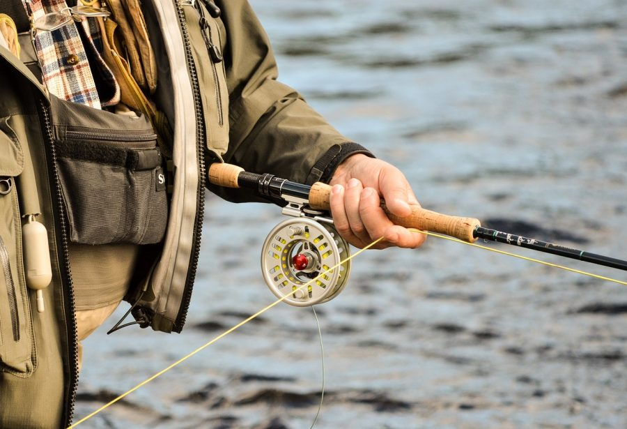 Spring Fly Fishing for Bass: The Three Stages of the Spawn