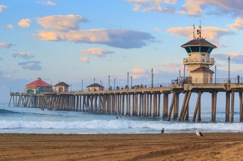 fishing california piers and surf