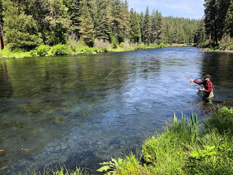 where to cast in a river to catch fish