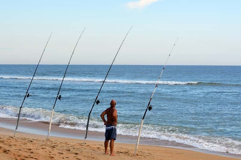 5 Best Surf Rods For The Money