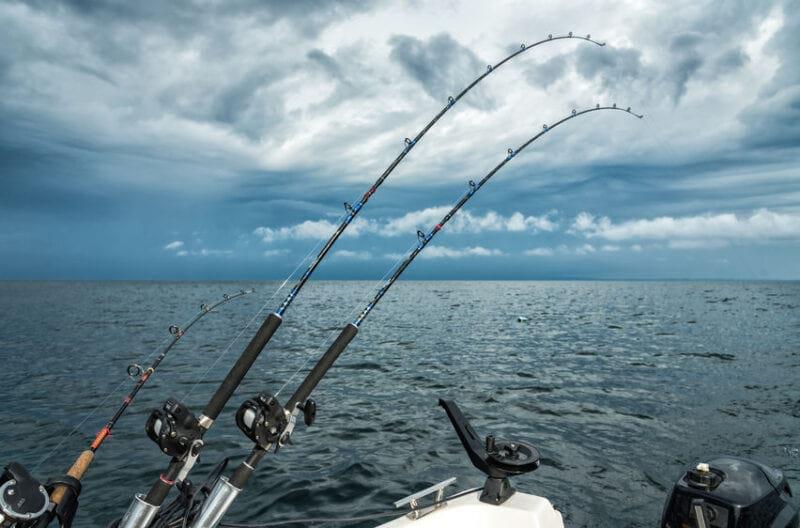 trolling rods bent fishing in lake